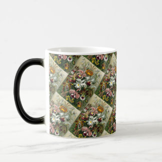 Vintage Orchids From Art Forms of Nature Magic Mug