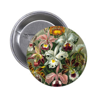 Vintage Orchids Illustration 6 Cm Round Badge