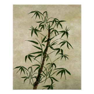Vintage Oriental Bamboo 1 Poster