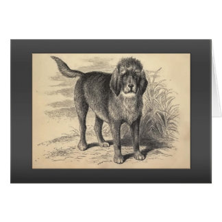 Vintage Otterhound Greetings Card
