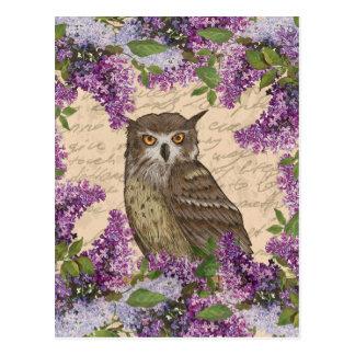 Vintage owl and lilac postcard