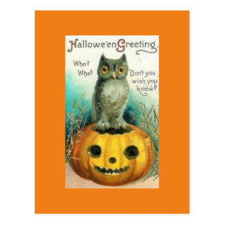 Vintage Owl on Pumpkin Halloween Postcard