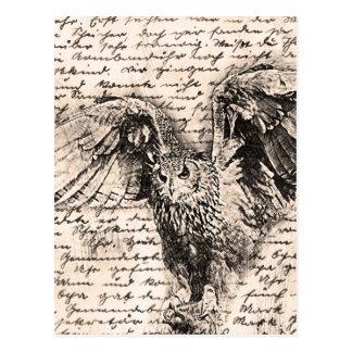 Vintage owl postcard