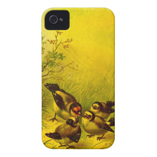 Vintage Painted Sparrows Blackberry Bold Case