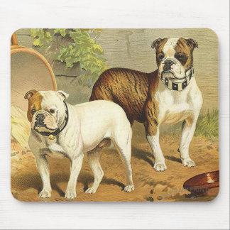 Vintage Painting of English Bulldogs Mousepads