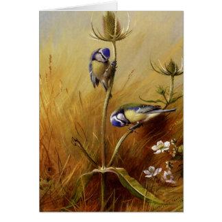 Vintage Pair of Birds Blank Note Cards