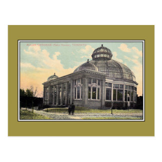 Vintage Palm House Allan Gardens Toronto Postcard