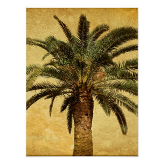 Vintage Palm Tree - Tropical Customized Template Poster
