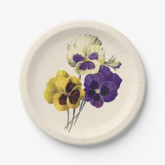 Vintage Pansy Flower Paper Plates