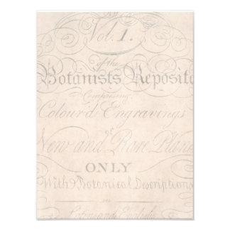 Vintage Parchment Botanical Script 1700s Template Photographic Print