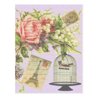 Vintage Paris- Birdcage Postcard