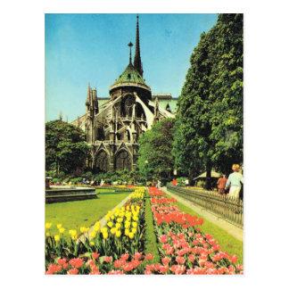 Vintage Paris, Paris Notre Dame, Ile de la Citie Postcard