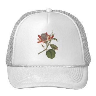 Vintage Passion Flower Cap
