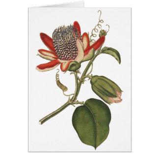Vintage Passion Flower Card