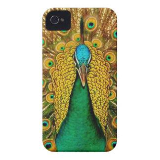 Vintage Peacock Blackberry Bold Case
