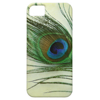 Vintage Peacock Feather iPhone 5 Cover