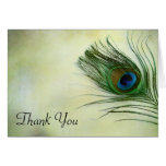 Vintage Peacock Feather Thank You Note Card