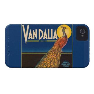 Vintage Peacock Fruit Crate Label Blackberry Bold Case