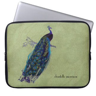 Vintage Peacock Full Feathers on Tattered Lace Laptop Sleeves