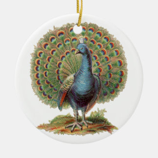 Vintage Peacock...ornament