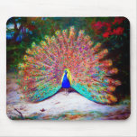 Vintage Peacock Painting Mousepad