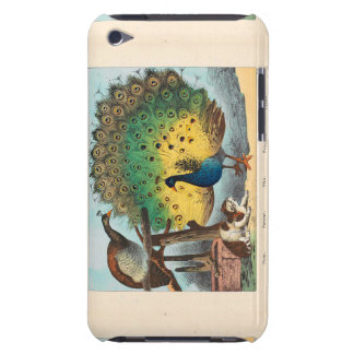 Vintage peacocks and a cat barely there iPod cover