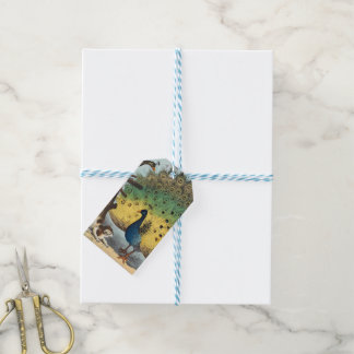 Vintage peacocks and a cat gift tags