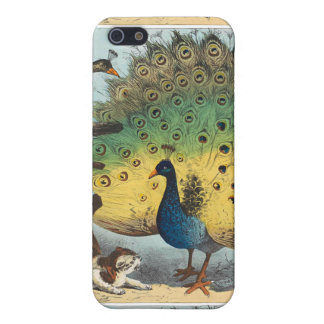 Vintage peacocks and a cat iPhone 5 covers