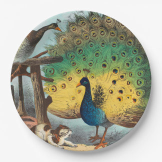 Vintage peacocks and a cat paper plate