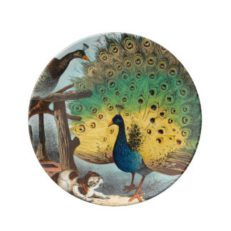 Vintage peacocks and a cat plate