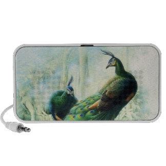 Vintage Peacocks Travelling Speakers