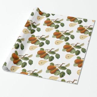 Vintage Pear Botanical Illustration