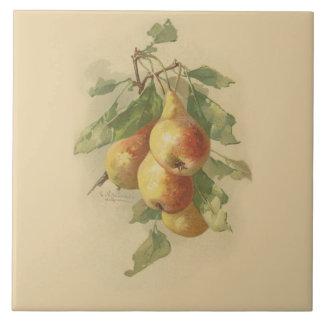 Vintage pears ceramic tile