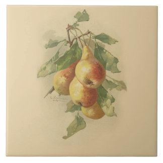 Vintage pears large square tile