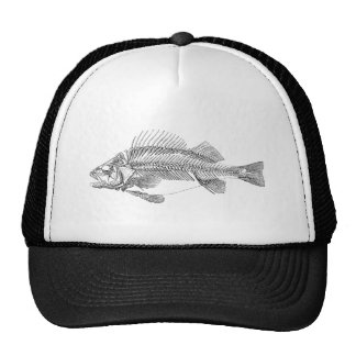 Vintage Perch Fish Skeleton - Fishes Template Cap