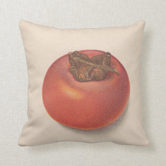 Vintage Persimmons American Jo Pillows