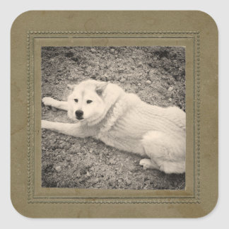 Vintage Photo Frame Instagram Photo Stickers