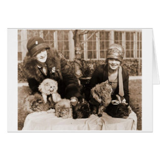 Vintage Photo - I Was Normal 3 Cats Ago, Card