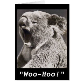 Vintage Photo Koala Congratulations on New Job Card