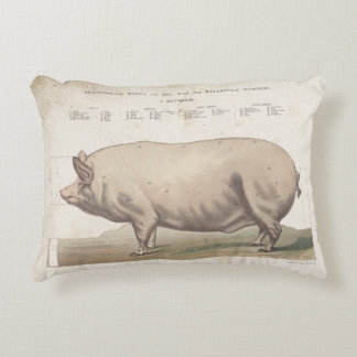Vintage pig antique ephemera pillow