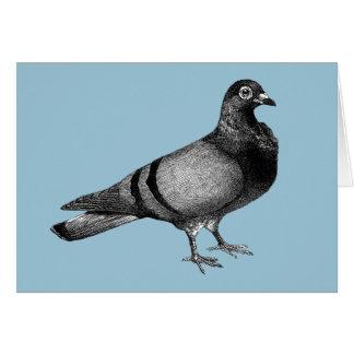 Vintage Pigeon gifts Greeting Card