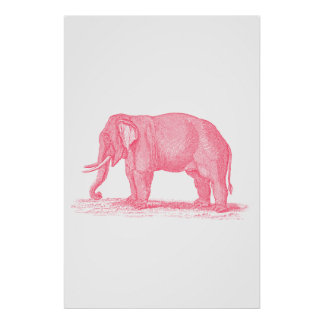 Vintage Pink Elephant 1800s Elephants Illustration Poster