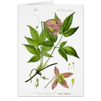 Vintage Pink Flower Card