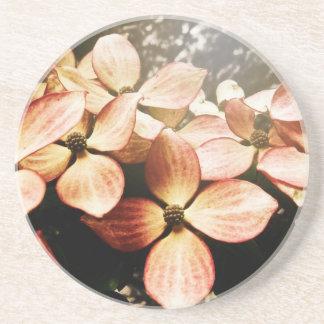 Vintage Pink Kousa Dogwood Flower Blossom Coaster