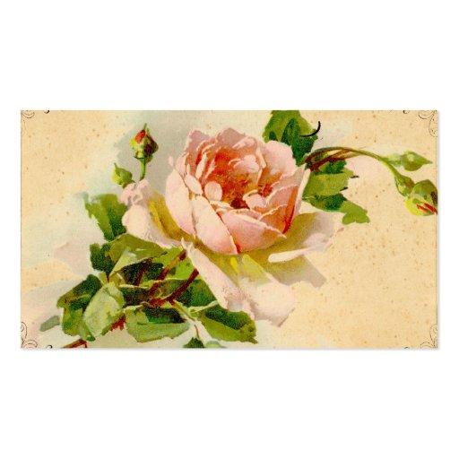 Vintage Pink Rose Business Profile Card Pack Of Standard Business Cards