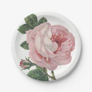 Vintage Pink Rose Flowers Shabby Chic Wedding 7 Inch Paper Plate