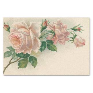 Vintage Pink Rose Tissue Paper