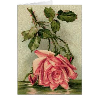 Vintage Pink Roses Card