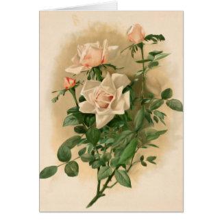 Vintage Pink Roses Note Card