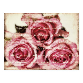 Vintage Pink Roses Postcard